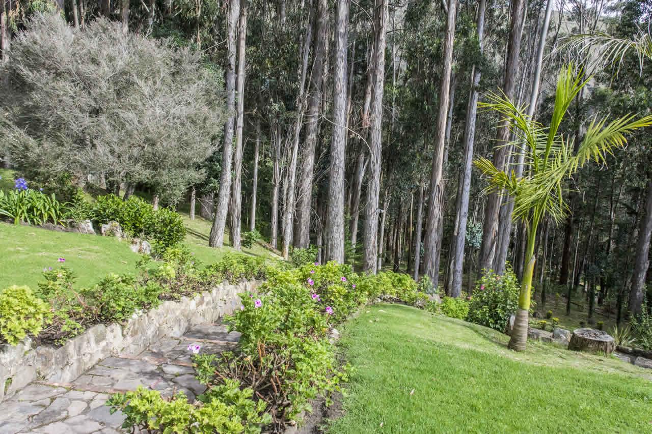 Casa Acanday para alquilar en Villa de Leyva - Camino al bosque