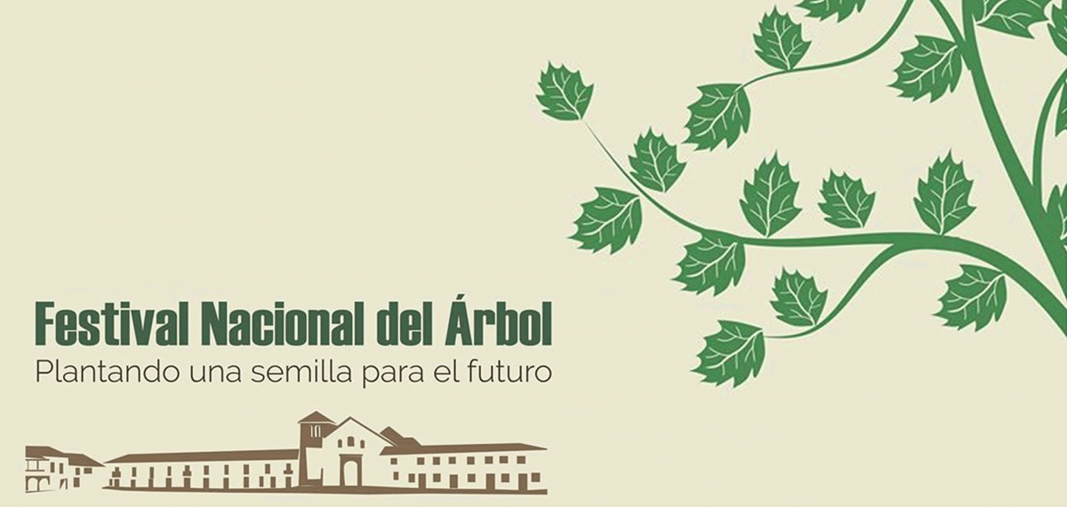 Festival Nacional del árbol de Villa de Leyva